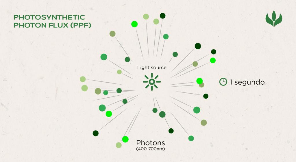 PPF: Fluxo de Fótons Fotossinteticamente Ativos