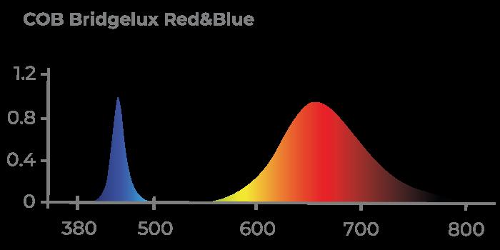 Espectro de Luz COB BRIDGELUX RED & BLUE