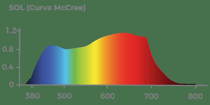 Curva McCree